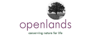 OL-Logo